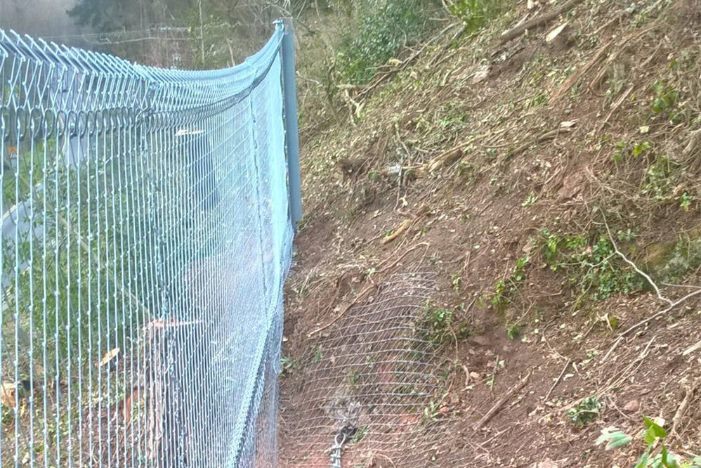 Bridgnorth - deveg & catch fencing