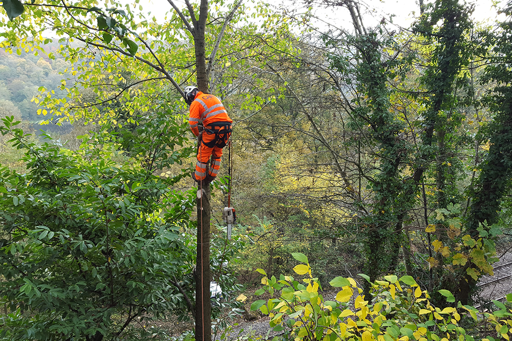 Rope Access Technicians - Geotechnical